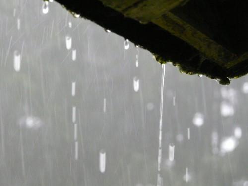 Regentropfen am Dach unserer Schutzhütte