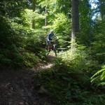 schöne Natur im Schwarzwald